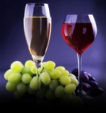 В Израиле проходит конкурс вина