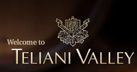 """""""Телиани вели"""" выносит на рынок новые вина"""