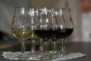 Лучшие вина Кубани в 2010 году
