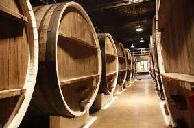 «Инкерман» может стать крупнейшим винохолдингом в СНГ