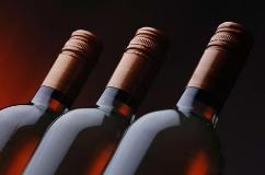 В Крымском районе Кубани будет построен новый винный завод
