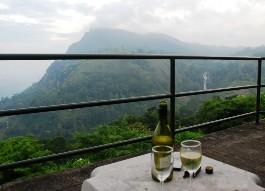 Шри Ланка решила производить вино из собственного винограда
