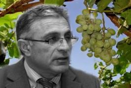 Имидж виноделия