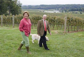 Новое приобретение Дональда Трампа - Kluge Estate Winery