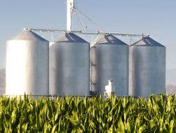 На Украине спиртзаводы банкроты будут производить биотопливо