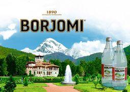 «Классические вина» отвергли обвинения Онищенко в поставках «Боржоми»