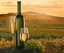 Азербайджан трехкратно увеличит площади под виноград