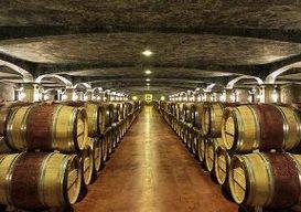 Швейцария приглашает на День открытых винных погребов