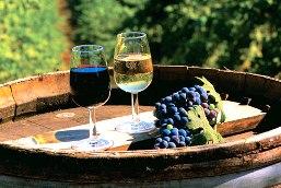 Тенденции развития мирового винного рынка