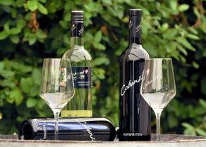 Cobenzl признано лучшим венским вином