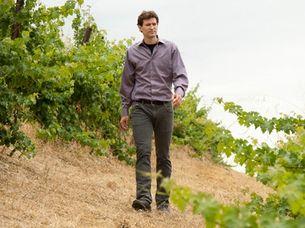 Глобальное потепление навсегда лишит Америку топовых вин