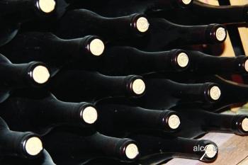 Журнал Напитки №3 2011 Русское виноделие происхождение видов