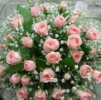 Поздравляем с Днем Рождения Елену Порман