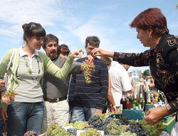 На Кубани начат выпуск первого в стране биовина