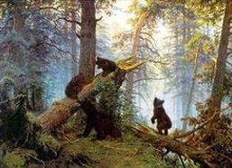"""Суд признал незаконным отказ в регистрации бренда """"Володя и медведи"""""""