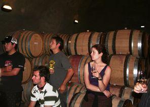 Грузия: Правительство должно помочь в развитии винных туров