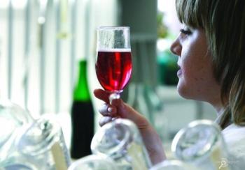 Праздник цимлянского виноделия начался в Ростовской области