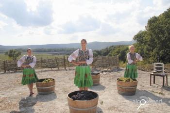 Второй фестиваль «гаражных» вин состоится осенью 2012 года