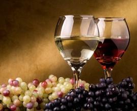 Круглый стол о развитии виноградарства и виноделия