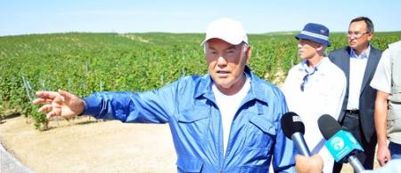 Н. Назарбаев: на юге страны создается новая отрасль – современное виноделие высокого качества