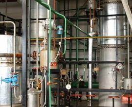 В новосибирском Биотехнопарке появится комбинат по глубокой переработке зерна