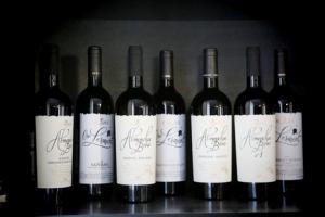 Кубанское вино завоевало золотую медаль международного конкурса в Словакии