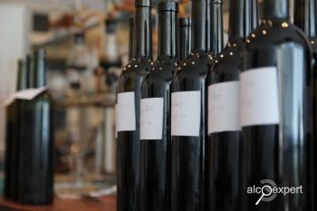 Вино из Грузии. Путевые заметки. ФОТО