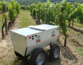 Электроника поможет следить за виноградниками