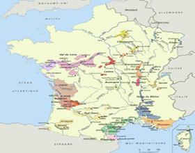 Жаркая погода способствует сохранению здоровой виноградной лозы на всей территории Франции.