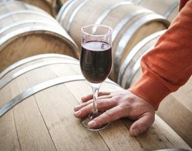 Производство вина в России в этом году может вырасти на 20%