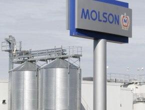 Производство пива компании Molson Coors остановлено из-за кибератаки