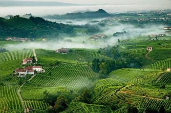 Названа «Европейская столица винной культуры-2016»