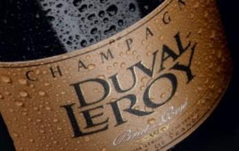 Во Франции запускают производство игристого вина для вегетарианцев