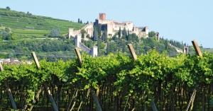 Винный регион Соаве включен в список национального наследия Италии