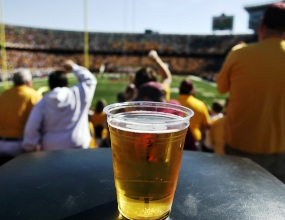 Законопроект о продаже пива на стадионах не предполагает употребление на трибунах арены