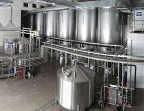 Краевые власти подсчитали выгоды от запуска нового пивоваренного завода на Камчатке
