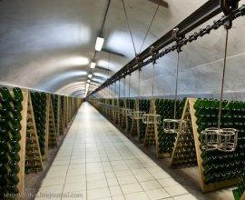 «Абрау-Дюрсо» займется производством игристых вин в Китае