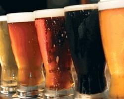 Производство «живого» нефильтрованного пива выросло на 3%