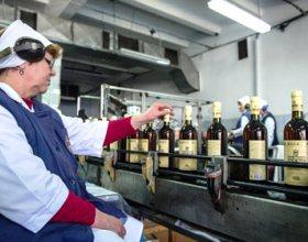 Власти Крыма: мощности предприятий по переработке винограда задействованы на четверть