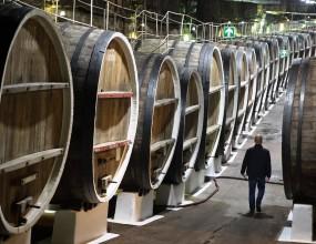 На юге Франции неизвестные вылили 200 тыс. литров вина из бочек на винохранилище