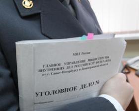 На директора алкогольного магазина в Южно-Сахалинске завели два уголовных дела