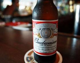 Пиво может подорожать на 50%