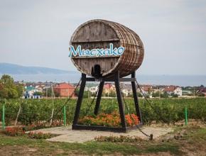 У созданной более века назад винодельни «Мысхако» сменился владелец