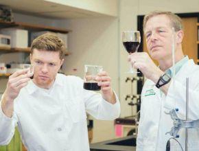 В США ученые изобрели избавляющий от винного похмелья гаджет