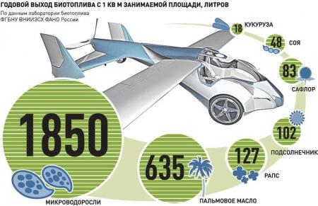 Игра на октане. В России начнут регулировать содержание биоэтанола в автобензине
