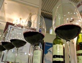 Не знают и не хотят: что мешает экспорту кубанских вин