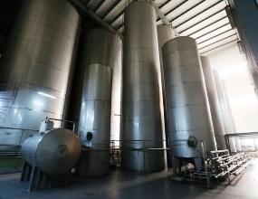 Производство шампанских вин в Беслане возобновится после многолетнего перерыва