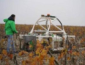 Роботы на винограднике в бордосском Clerc Milon