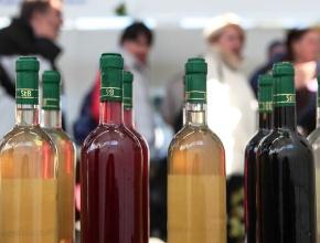 На Ставрополье возрождают винный туризм