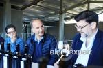 Вино Армении. Винодельня ZORAH. Армянские традиции с итальянской страстью. ФОТО